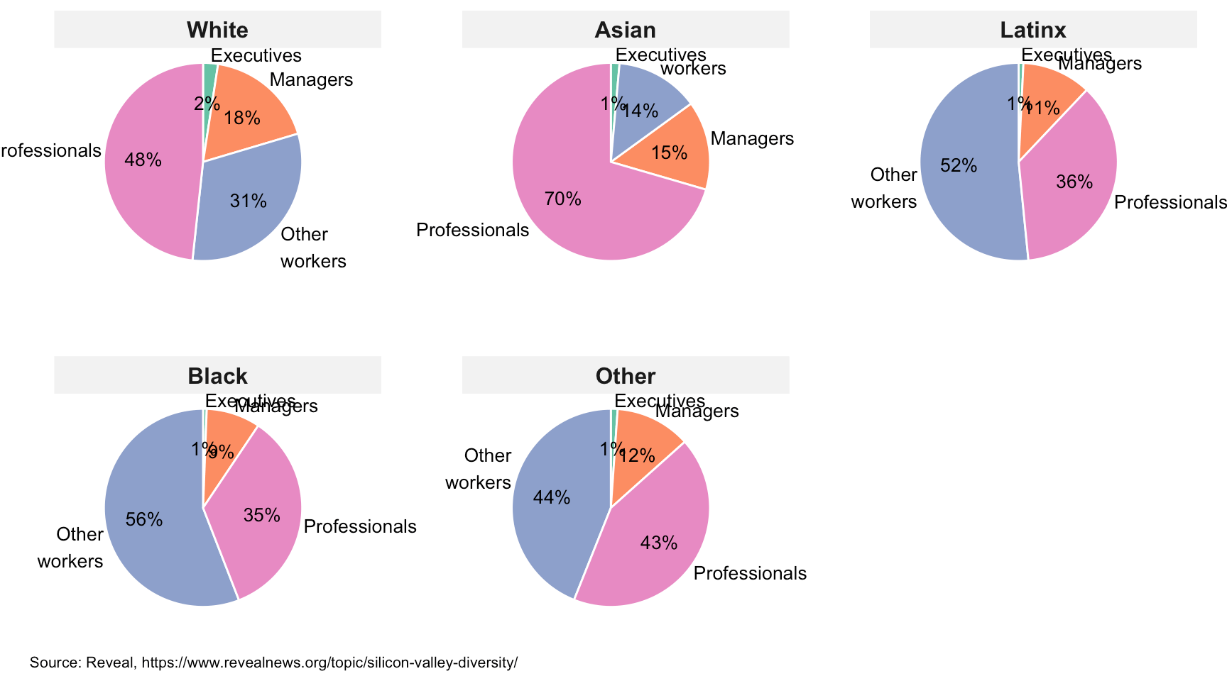 Pie chart panels showing job categories of employees in Silicon Valley companies by ethnicity/race